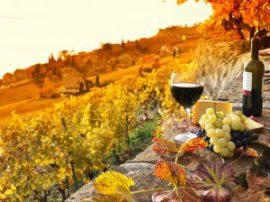Италия осенью: путешествие по итальянским курортам в сентябре-ноябре
