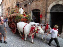 Праздник клубники, рыбный фестиваль, сбор урожая – Сицилия приглашает на гастрономические фестивали